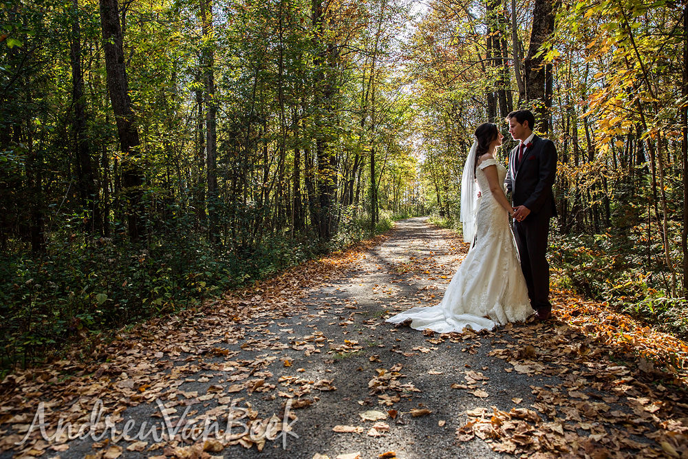 Another Stonefields Wedding – Emily & Aaron