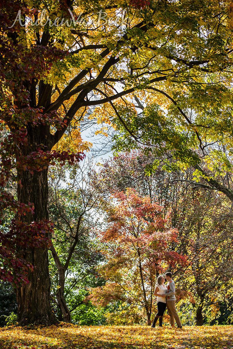 Ottawa-Arboretum-Photography-06