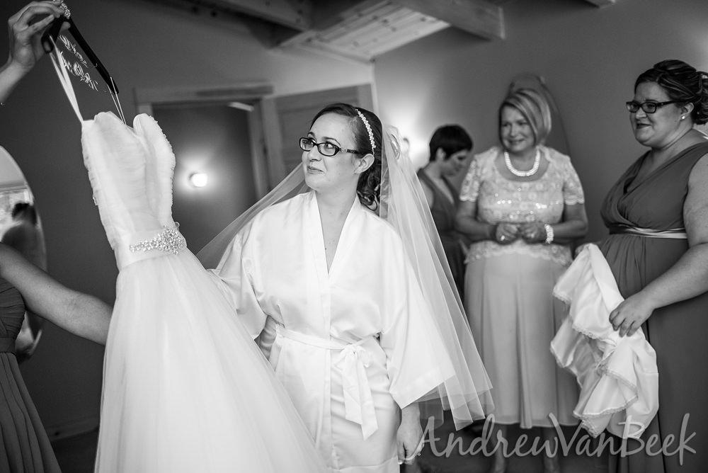 belvedere-wedding-03