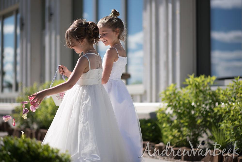 belvedere-wedding-29