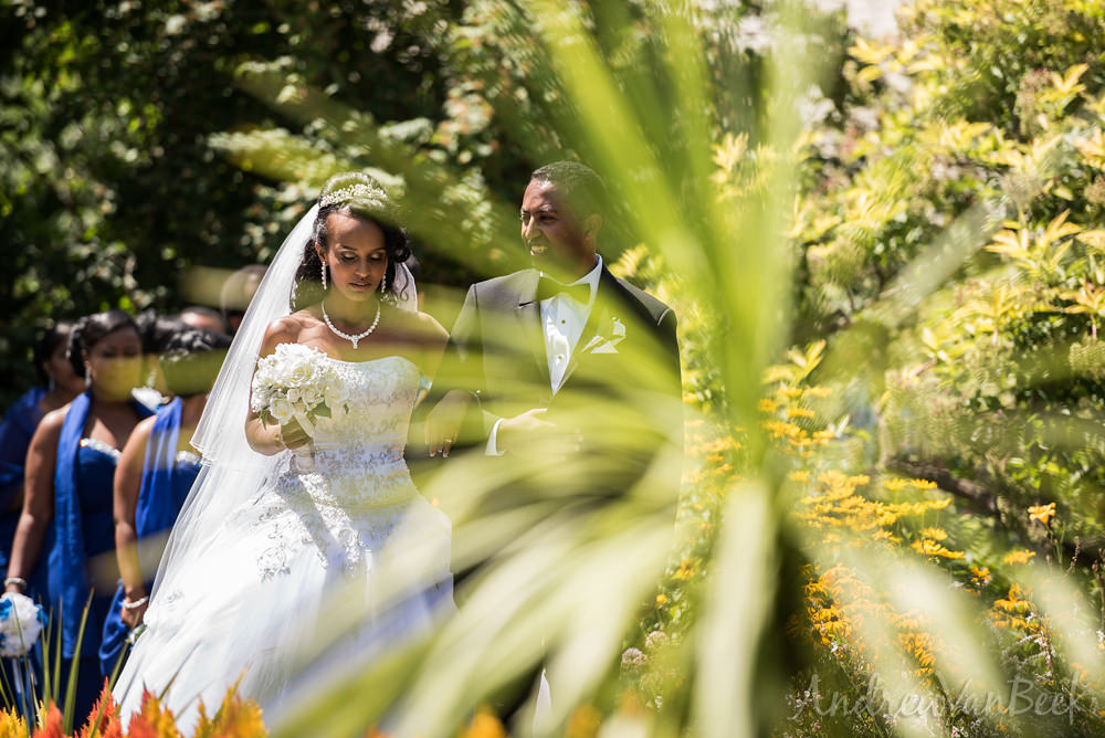 ottawa-ethiopian-wedding-35