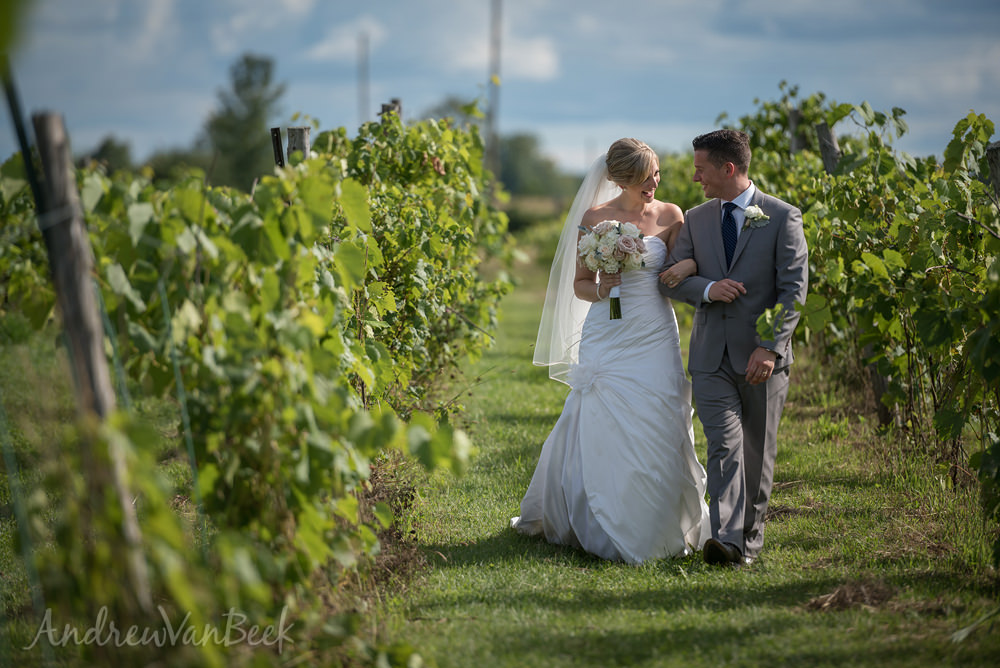 Jabulani-Vineyard-Wedding-30