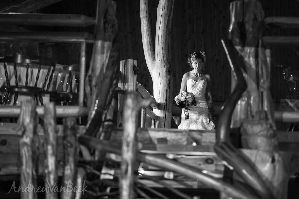 Ottawa-Best-Wedding-Photography-10