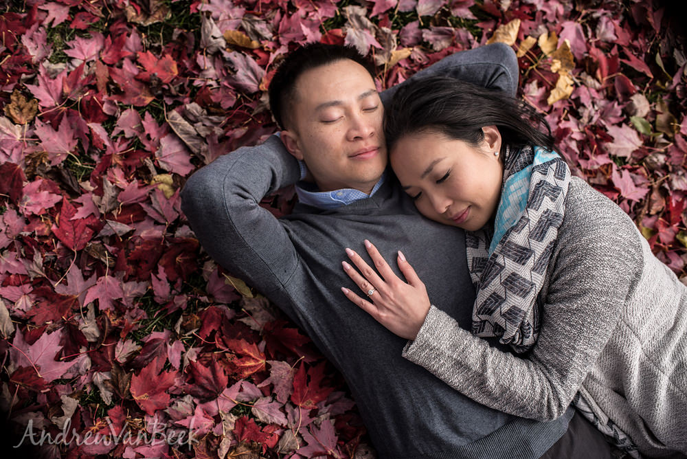 An Arboretum Engagement Session for Guannan & Cuong