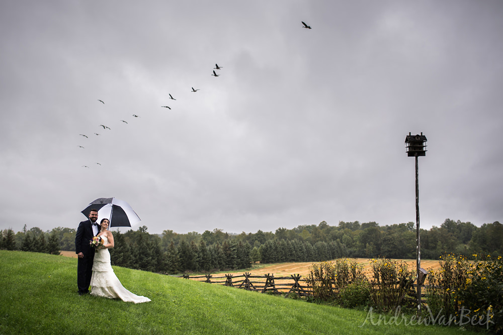 An Evermore Wedding for Adrienne & Pat