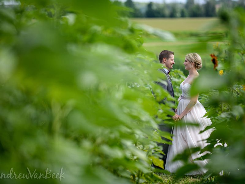 Devon & Tom's Strathmere Wedding